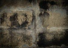 Béton grunge, lichen sur le mur en béton photo libre de droits