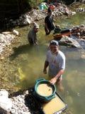 Bêcheurs d'or Photos libres de droits