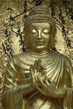 Bênção Buddha Fotografia de Stock Royalty Free