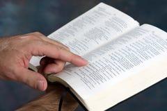 A Bíblia da leitura Foto de Stock