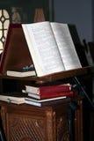 A Bíblia do azevinho fotos de stock
