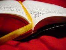 A Bíblia romena Imagens de Stock Royalty Free