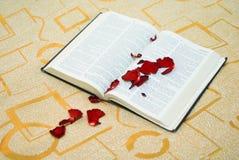 A Bíblia Rose Petals Fotografia de Stock Royalty Free