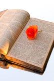 A Bíblia velha húngara Fotos de Stock Royalty Free