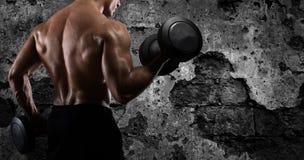 Bíceps atlético del entrenamiento del hombre en el gimnasio fotografía de archivo libre de regalías