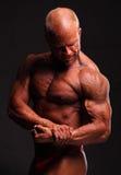 Bíceps do halterofilista imagens de stock royalty free