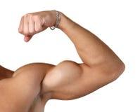 Bíceps doblado aislado en blanco Imagen de archivo libre de regalías