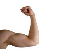 Bíceps filtrado Fotografía de archivo libre de regalías