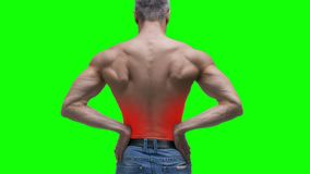 Ból pleców, cynaderki rozognienie, starszy mięśniowy mężczyzna z backache na zielonym tle, chroma kluczowy 4K wideo zdjęcie wideo