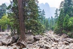 Bóveda del centinela de un rastro más bajo de la caída de Yosemite foto de archivo libre de regalías
