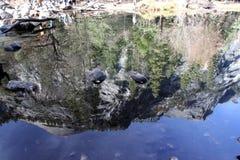 Bóveda del norte y reflexión adyacente de los picos en el lago mirror Fotografía de archivo