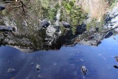 Bóveda del norte y reflexión adyacente de los picos en el lago mirror Imagen de archivo libre de regalías