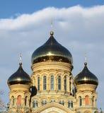 Bóveda naval de la catedral, Letonia Imagen de archivo libre de regalías