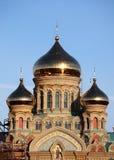 Bóveda naval de la catedral, Letonia Imágenes de archivo libres de regalías