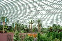 Bóveda seca del tiempo del jardín botánico, Singapur foto de archivo