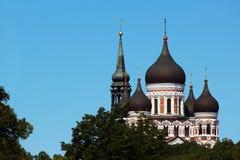 Bóvedas de Alexander Nevsky Orthodox Cathedral en la ciudad vieja de Tallinn, Estonia Foto de archivo libre de regalías