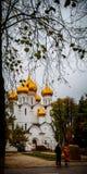 Bóvedas de oro Imagen de archivo libre de regalías