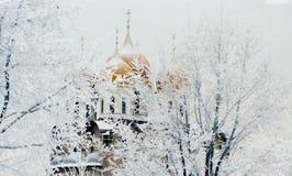 Bóvedas del oro de la iglesia Fotos de archivo libres de regalías