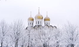 Bóvedas del oro de la iglesia Imagen de archivo libre de regalías