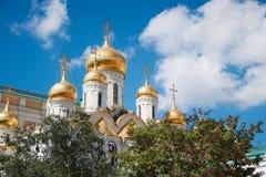 Bóvedas y cruces de oro de la catedral del anuncio de la iglesia ortodoxa de la Moscú con el serbal y el abedul en Imágenes de archivo libres de regalías