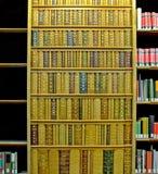 böcker Royaltyfria Bilder