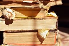 böcker isolerad seriebunt arkivbilder