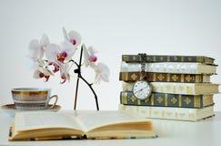 Böcker med den gamla klockan royaltyfri bild