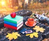 Böcker och en kopp av varmt kaffe med kanel på tabellen i skogen på solnedgången tappning för stil för illustrationlilja röd till arkivbilder