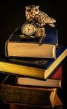 Böcker och tid Fotografering för Bildbyråer