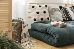 Böcker på den scandinavian gröna futonen med kuddar, verkligt foto royaltyfri foto