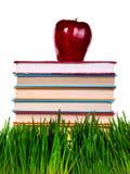 Böcker på gräset Arkivbild
