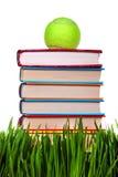 Böcker på gräset Arkivfoto