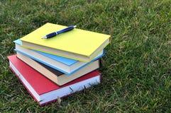Böcker på gräsmatta Fotografering för Bildbyråer