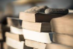 Böcker på stranden 6 Arkivbild