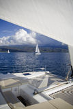 böj catamarans Royaltyfri Bild