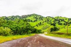 Böjande väg upp de gröna kullarna royaltyfri bild