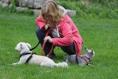 Böjer äldre kvinnor ner till kontrollen på hennes hundkapplöpning på en parkera Att gå hundkapplöpning är en stor övning för äldr arkivfoto