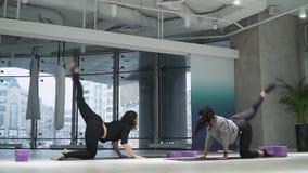 Böjlig härlig kvinna som lär hur man gör övningar i en hängmatta för yoga i studio inomhus med hennes instruktör athirst arkivfilmer
