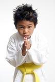 böjning av den gulliga karateungen royaltyfri fotografi