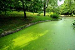 böjningsflod Royaltyfri Fotografi