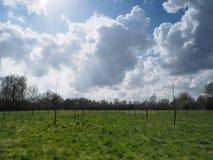 Bölja vita stackmolnmoln i en blå himmel Royaltyfria Bilder