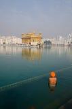 Bön på den guld- templet royaltyfri bild