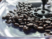 böna för svart kaffe i kistamaskinen Arkivfoto