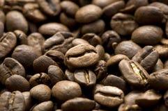 bönacloseupkaffe Fotografering för Bildbyråer