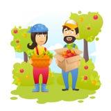 Bönder i trädgård Arkivfoton