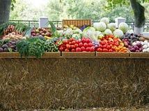 Bönder marknadsför nya grönsaker Fotografering för Bildbyråer
