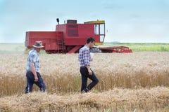 Bönder på fält med sammanslutningharbester royaltyfri foto