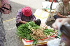 Bönder säljer grönsaker arkivfoto