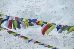 Bönen sjunker i Nepal som trekking på Himalaya berg Arkivfoton