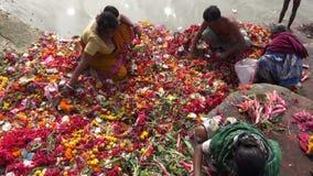 Böner och blommor nära den Dakshineswar Kali templet stock video
